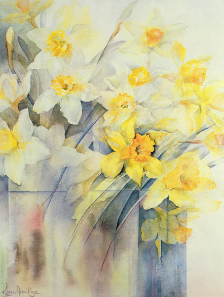 Golden Bloom Painting - Mixed Daffodils In A Tank by Karen Armitage