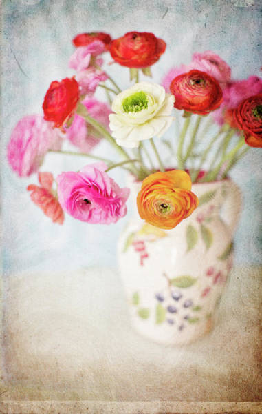 Vase Of Flowers Photograph - Mixed Ranunculus In Vase by Susangaryphotography