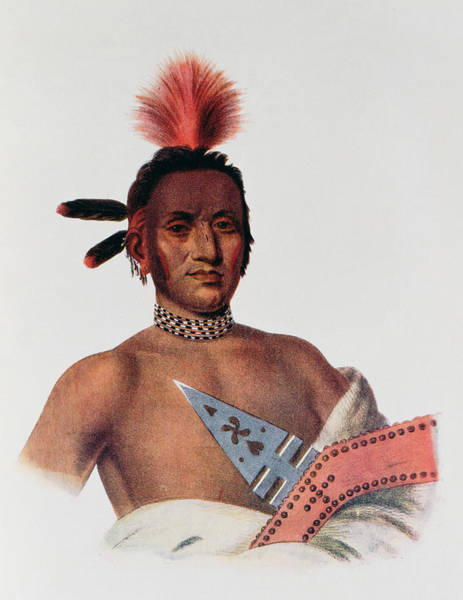 Mohican Photograph - Moa-na-hon-ga Or Great Walker, An Iowa Chief, 1824, Illustration From The Indian Tribes Of North by Charles Bird King