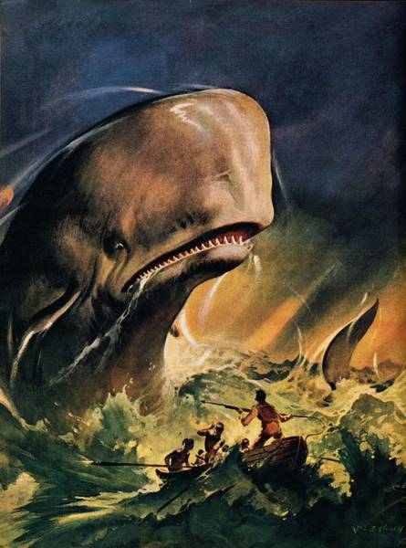 Wall Art - Painting - Moby Dick by James Edwin McConnell