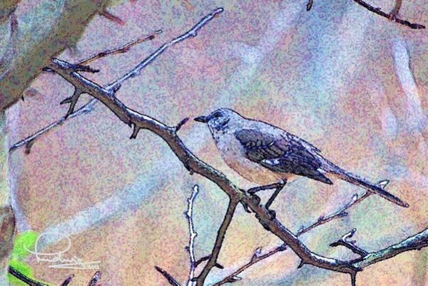 Photograph - Mocking Bird by Ludwig Keck