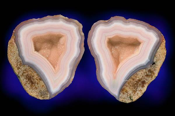 Geodes Photograph - Moctezuma Agate by Natural History Museum, London/science Photo Library