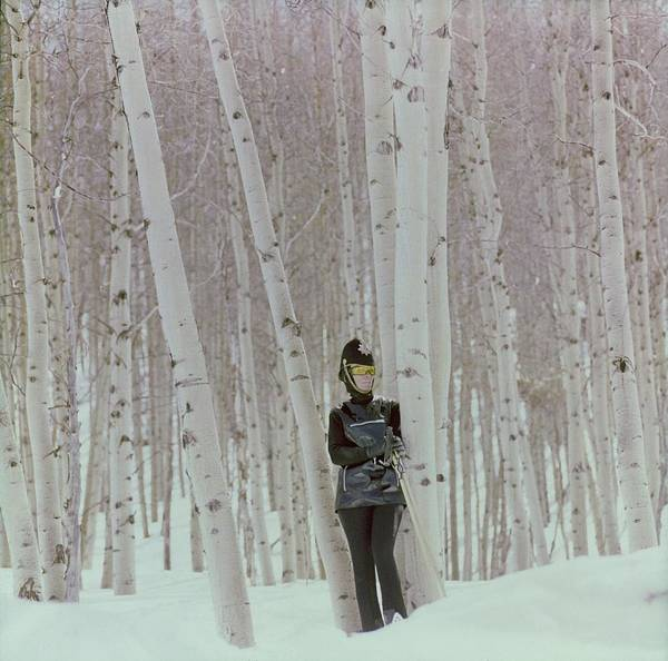 Wall Art - Photograph - Model In Snow Among Birch Trees by Henry Clarke