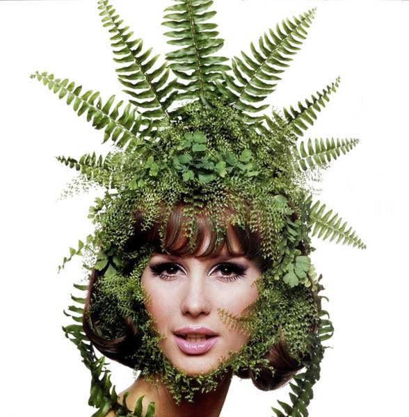 Eyeliner Wall Art - Photograph - Model Wearing A Fern Headdress by Bert Stern