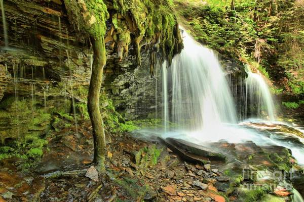 Photograph - Mohawk Falls At Ricketts Glen by Adam Jewell