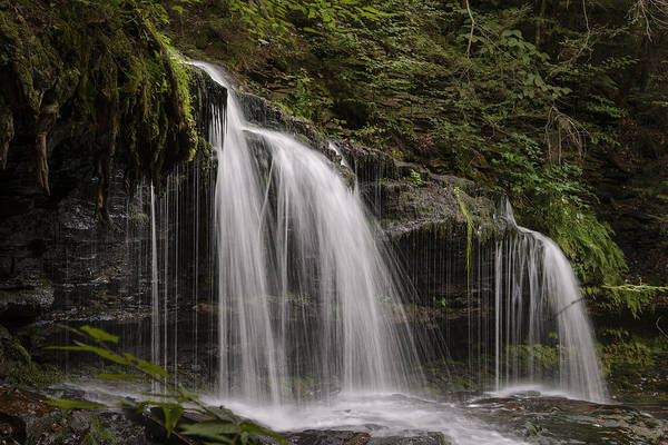 Photograph - Mohawk Falls by Robert Mitchell