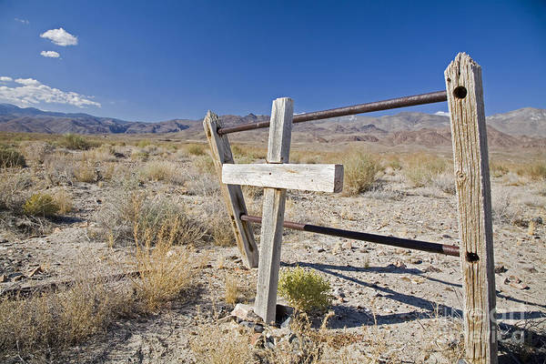 Photograph - Mojave Desert Grave by Jim West