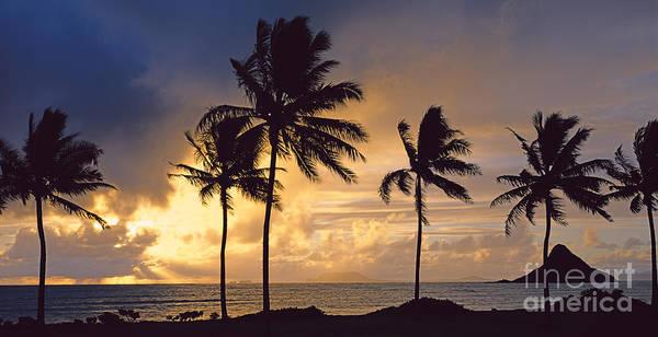 Mokolii Photograph - Mokolii Sunrise by John De Mello