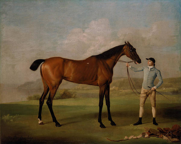 Painting - Molly Long-legs With Her Jockey by Celestial Images