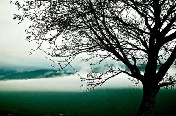 Photograph - Moment by HweeYen Ong