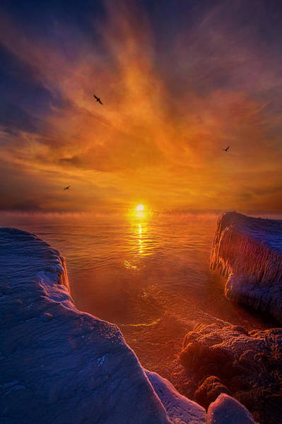 Photograph - Moments Of Discovery by Phil Koch