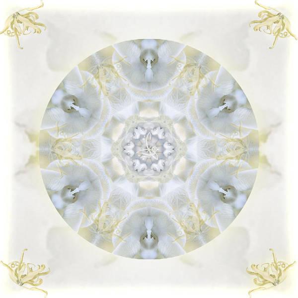 Digital Art - Monoi by Alicia Kent