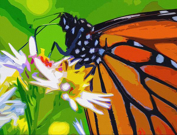 Butterfly On Flower Digital Art - Monarch by Brian Stevens