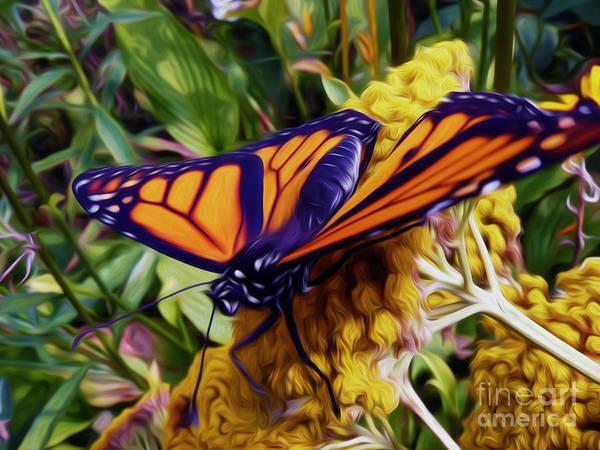 Digital Art - Monarch On Yarrow by Kathryn Strick