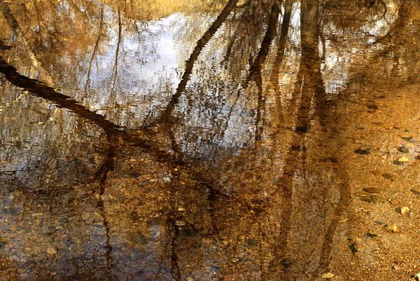 Monet Creek Art Print