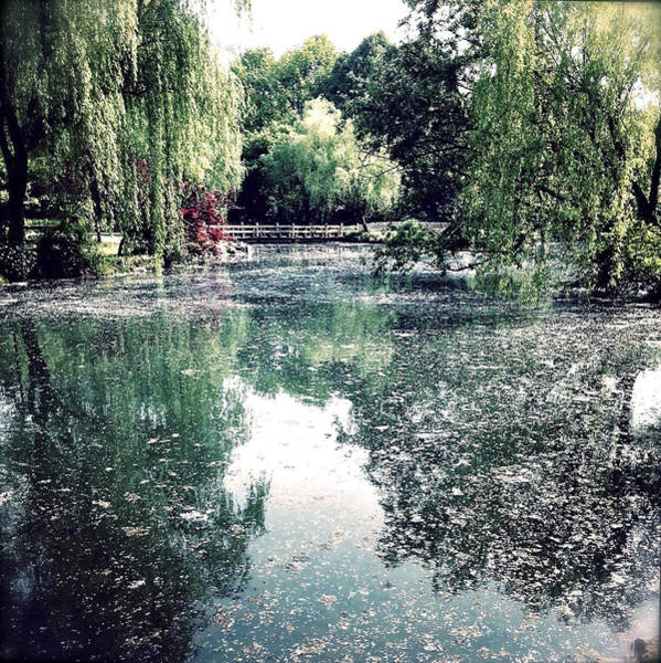 Photograph - Monet Thoughts by HweeYen Ong