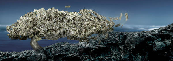 Prosperity Photograph - Money Tree by Panoramic Images