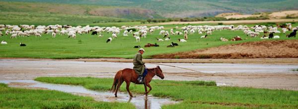 Wall Art - Photograph - Mongolia, Tov, Nomad Camp, Rallying Of by Tuul & Bruno Morandi