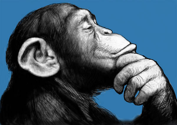 Monkey Wall Art - Painting - Monkey Pop Art Drawing Sketch by Kim Wang