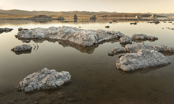 Photograph - Mono Lake by Francesco Emanuele Carucci