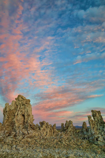 Photograph - Mono Lake Tufa At Dusk by Priya Ghose