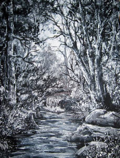 Megan Walsh - Monochrome forest