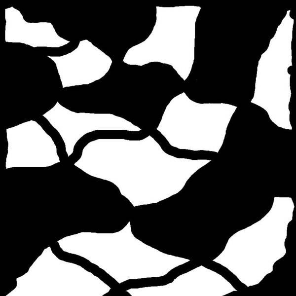 Monochrome New1builder3 Glyph 12 Art Print