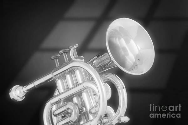 Photograph - Monotone Trumpet by M K Miller