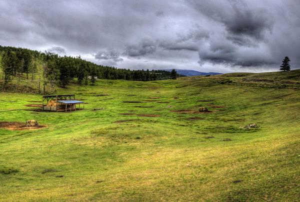 Photograph - Montana Breeding Ground by Lee Santa