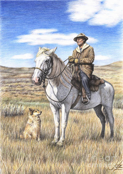 Hund Drawing - Montana Shepherd by Nicole Zeug
