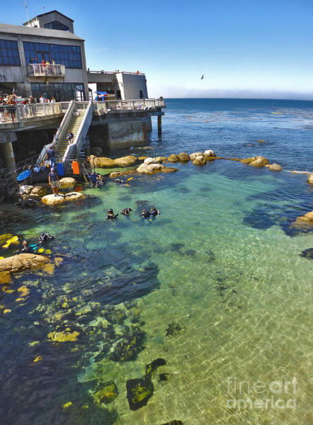 Painting - Monterey Bay Aquarium by Gregory Dyer