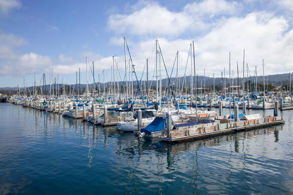 Photograph - Monterey Harbor by Priya Ghose