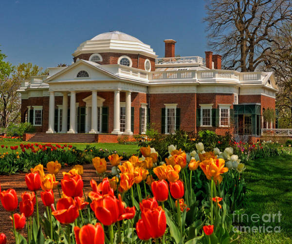Thomas Jefferson Photograph - Monticello by Nigel Fletcher-Jones