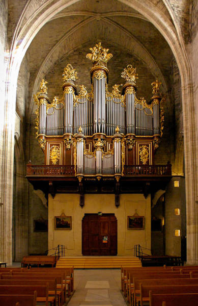 Photograph - Montpellier Organ From The Nave by Jenny Setchell