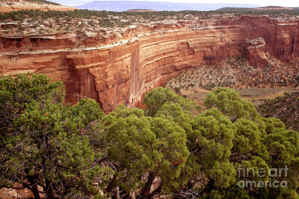 George Canyon Photograph - Monument Canyon by George Ranalli