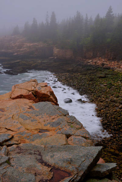 Wall Art - Photograph - Monument Cove In The Fog by Stephen  Vecchiotti