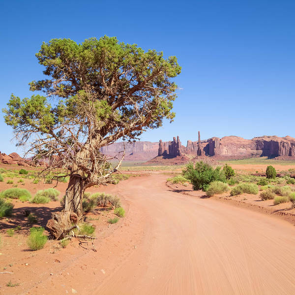 Geologic Formation Photograph - Monument Valley Drive by Melanie Viola