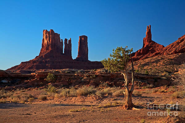 Photograph - Monument Valley by Fred Stearns