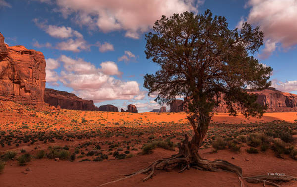 Wall Art - Photograph - Monument Valley Morning by Tim Bryan