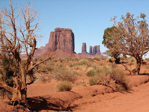 Photograph - Monument Valley by Susan Leonard