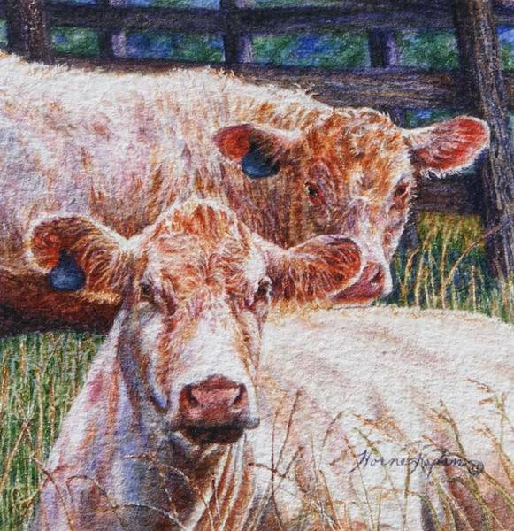 Moo Are You? Art Print