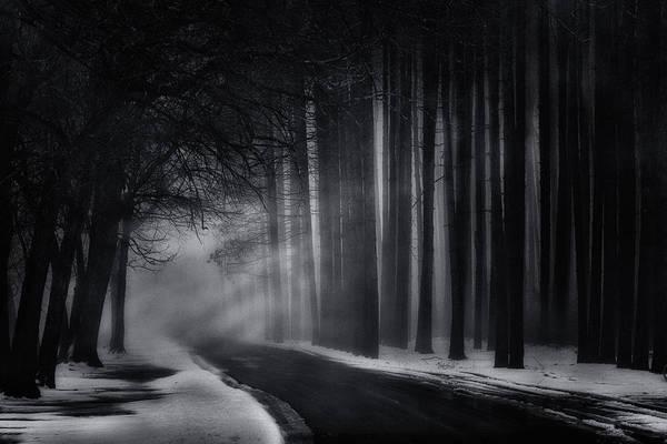 Photograph - Mood With Mystery by Emmanuel Panagiotakis