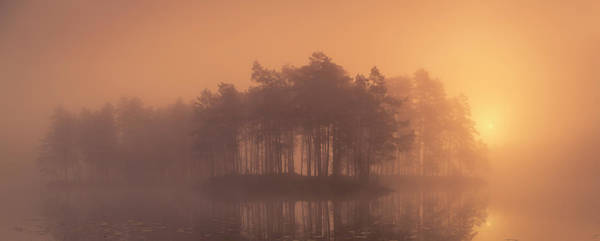 Foggy Photograph - Moody by Andreas Christensen