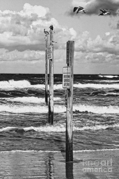 Photograph - Moody Beach Day by Deborah Benoit