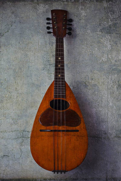 Hand Painted Photograph - Moody Mandolin by Garry Gay