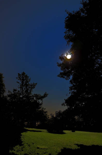Photograph - Moon And Pegasus by Greg Reed