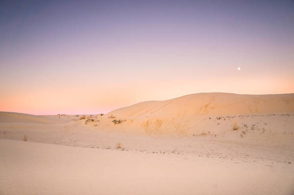 Deserts Photograph - Moon And Sand Dune In Twilight by Ellie Teramoto