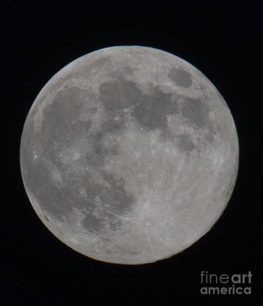 Photograph - Moon Closeup by Dale Powell