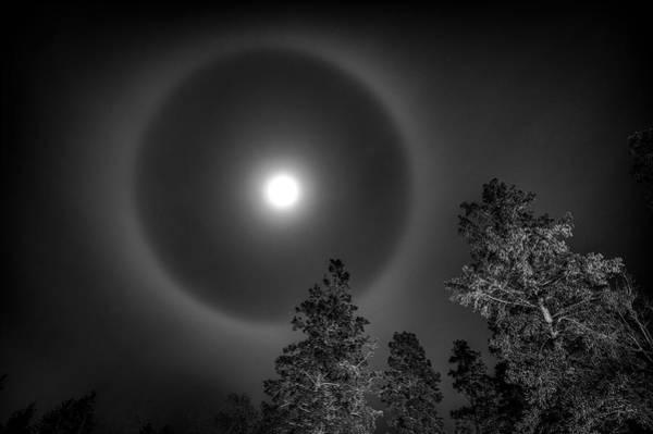 Photograph - Moon Dog by Doug Gibbons