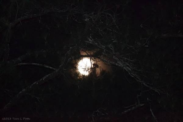 Rockdale County Photograph - Moon Eye by Tara Potts